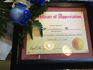 Finnegan's Certificate of Appreciation from the shelter he was working at