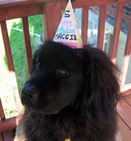 Maggie turns 5!